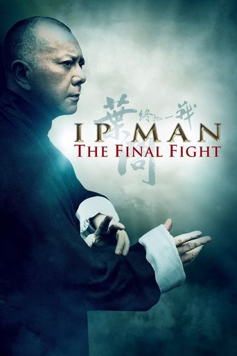 Ip Man: The Final Fight Poster