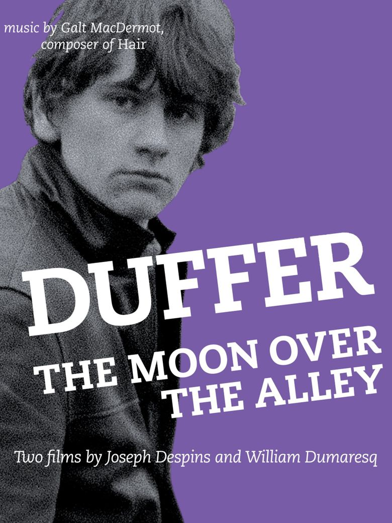 The Moon Over The Alley Poster
