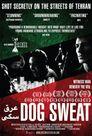 Watch Dog Sweat