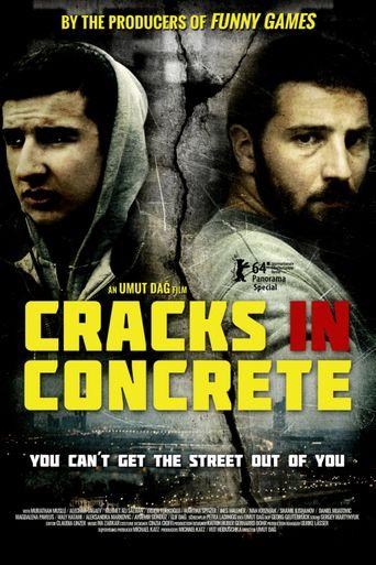 Cracks in Concrete Poster
