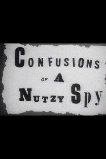 Confusions of a Nutzy Spy Poster