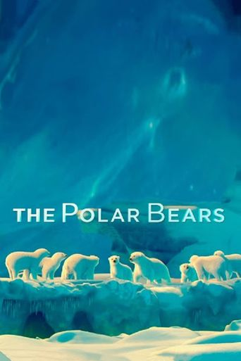 The polar bears Poster