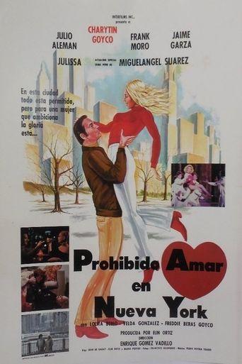 Forbidden Love in New York Poster
