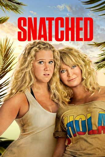 Watch Snatched