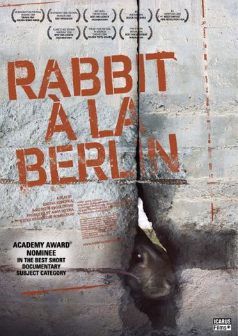 Rabbit à la Berlin Poster