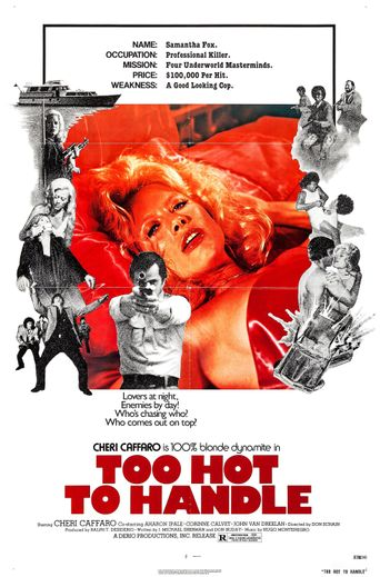 Too Hot to Handle Poster