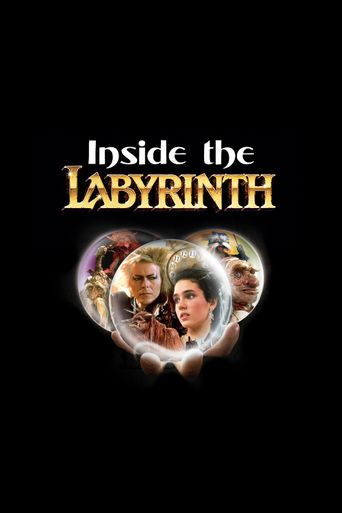 Inside the Labyrinth Poster