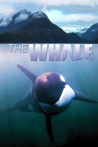 Watch The Whale