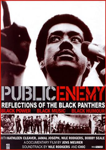 Public Enemy: Reflections of The Black Panthers Poster