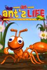 Watch An Ant's Life