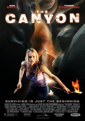 The Canyon Poster