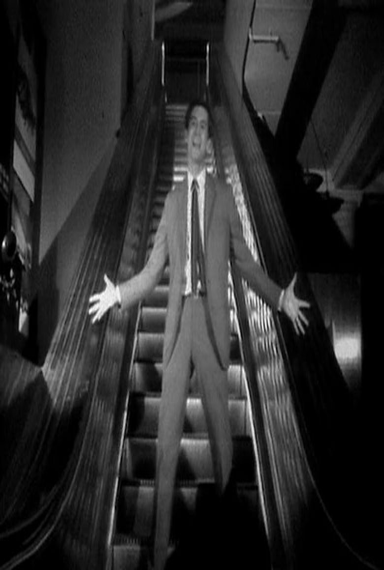 Evening Primrose Poster