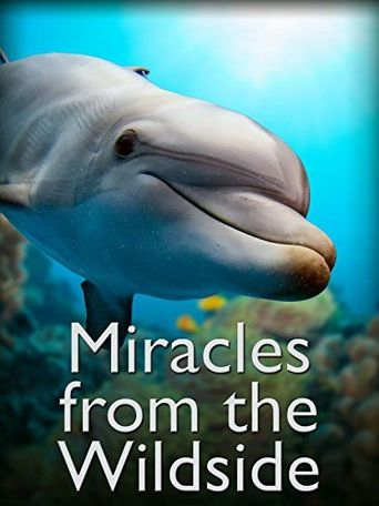 Miracles from the Wildside Poster