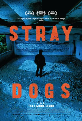 Stray Dogs Poster