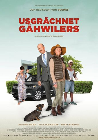Meet The Gähwilers Poster