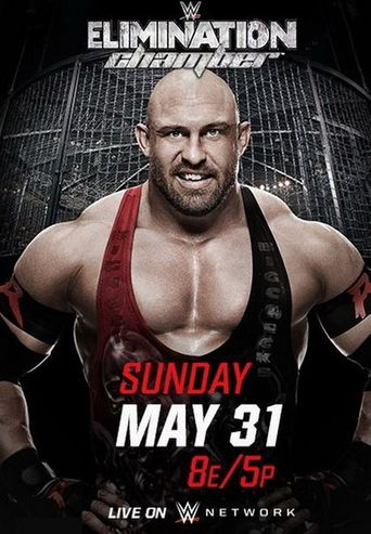 WWE Elimination Chamber 2015 Poster