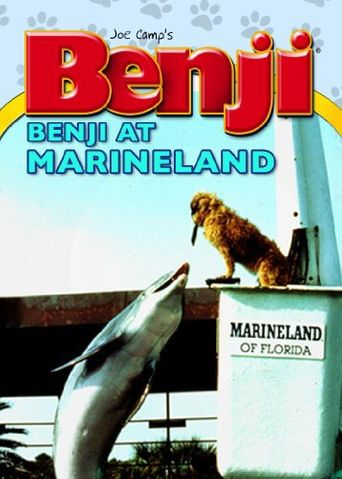 Benji at Marineland Poster