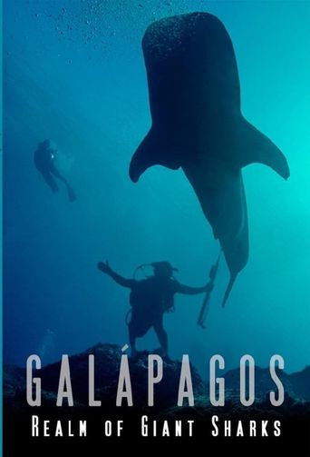 Galapagos Realm Of Giant Sharks Poster