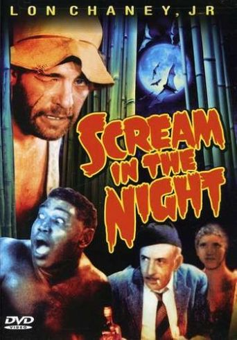 A Scream in the Night Poster