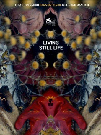 Living Still Life Poster