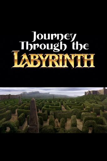 Journey Through the Labyrinth Poster