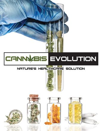 Cannabis Evolution Poster