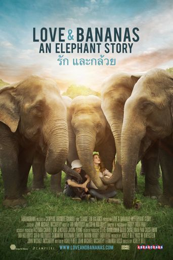 Watch Love & Bananas: An Elephant Story