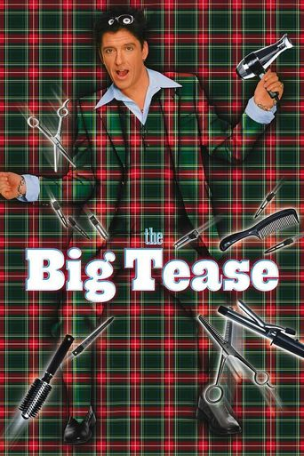 The Big Tease Poster
