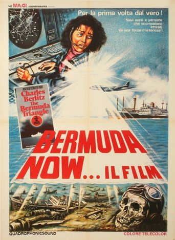 The Bermuda Triangle Poster