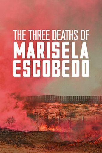 The Three Deaths of Marisela Escobedo Poster