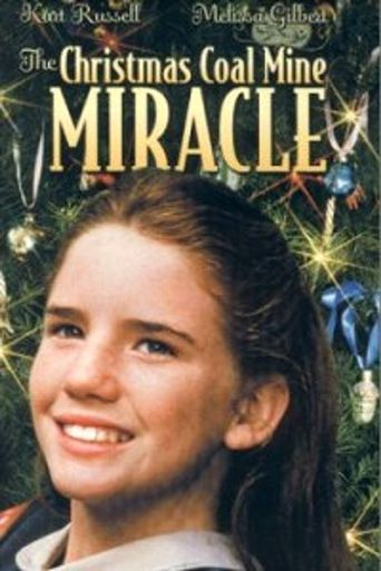 Christmas Miracle in Caufield, U.S.A. Poster