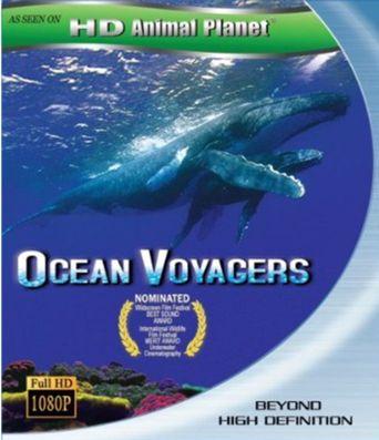 Ocean Voyagers Poster