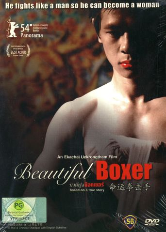 Beautiful Boxer Poster