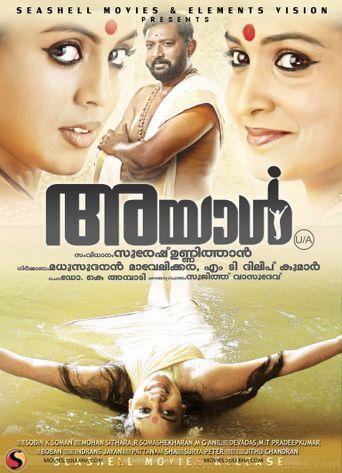 Ayal Poster