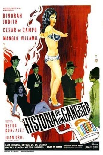Historia de un gángster Poster