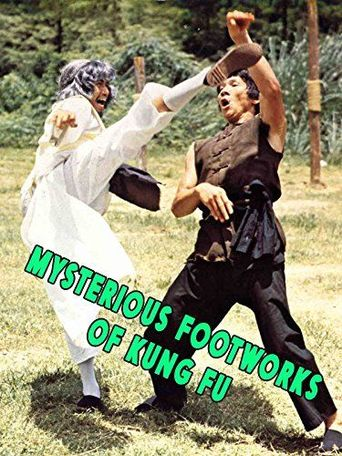 Mysterious Footwork of Kung Fu Poster