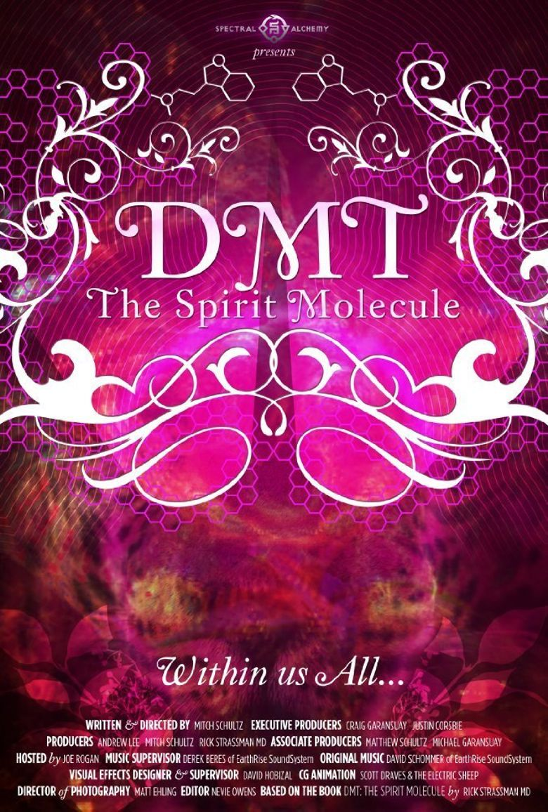 Watch Dmt The Spirit Molecule Online