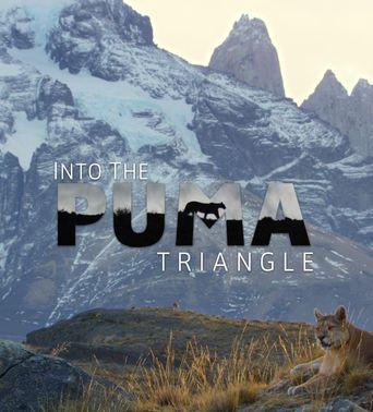 Into the Puma Triangle Poster