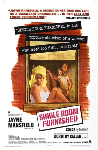 Single Room Furnished Poster