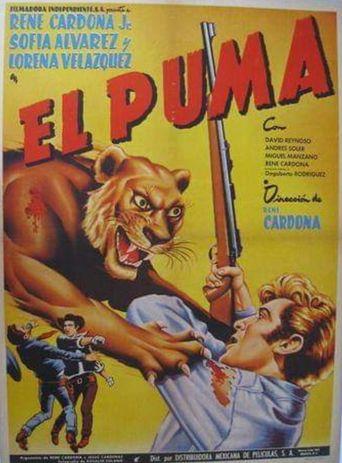 El puma Poster