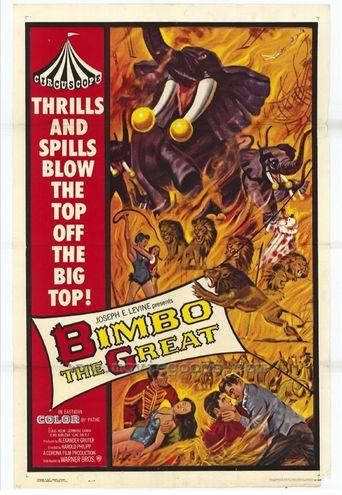 Mord in der Manege Poster