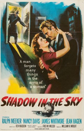 Shadow in the Sky Poster