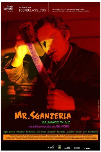 Mr. Sganzerla: Os Signos da Luz Poster