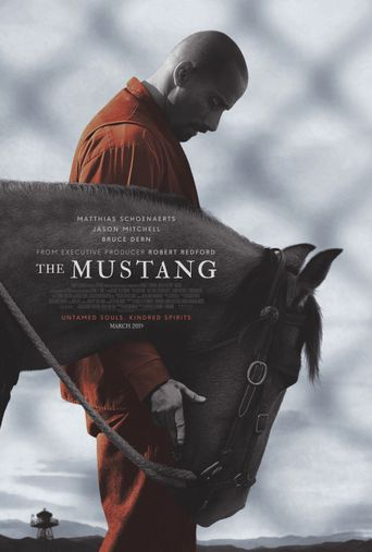 The Mustang Poster