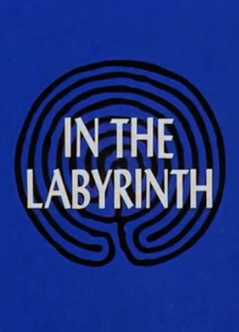 In the Labyrinth Poster