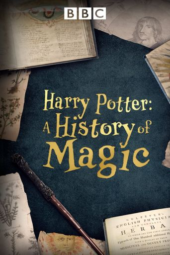 Harry Potter: A History Of Magic Poster