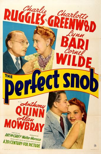 The Perfect Snob Poster