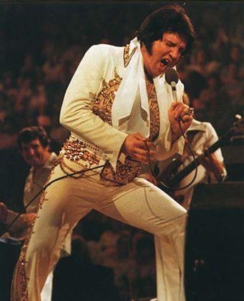 Elvis in Concert Poster