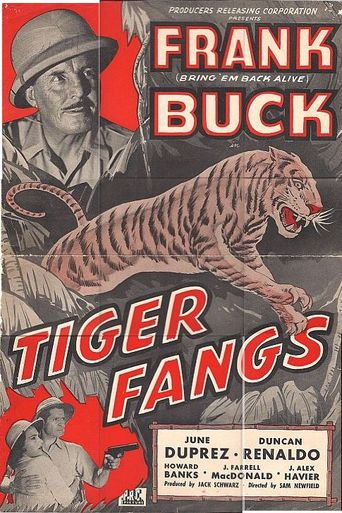 Tiger Fangs Poster