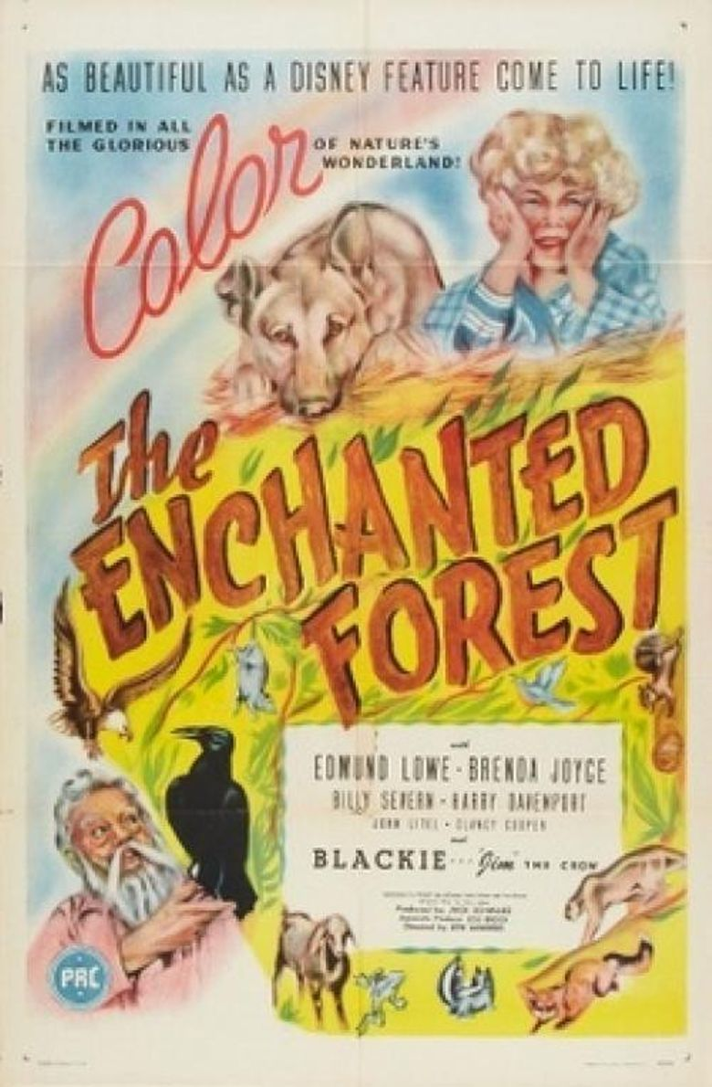 The Enchanted Forest Poster